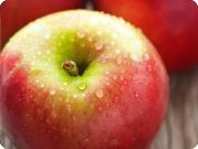 apples_joya